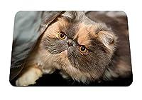 22cmx18cm マウスパッド (猫のふわふわの顔を発見) パターンカスタムの マウスパッド