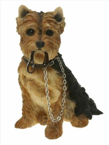 Dog Studies - Walkies Range Yorkshire Terrier Figurine con piombo seduto LP8282