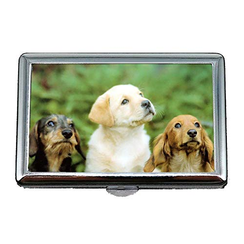 Zigaretten-Kasten/Kasten, Bulldoggen-Welpenhunde Haustiere niedlicher Hund hd, Visitenkarten sauber