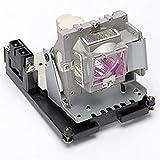 Taxan KG-PH1004XS プロジェクターランプユニット