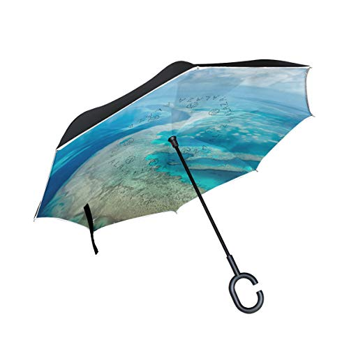 ISAOA großer Regenschirm, umgekehrter Regenschirm, winddicht, doppellagige Konstruktion, umgekehrter faltbarer Regenschirm für Auto, Regen, Außenbereich, C-förmiger Griff, selbststehender Erdschirm