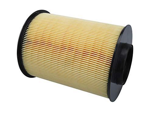 Filtro de aire 10001496