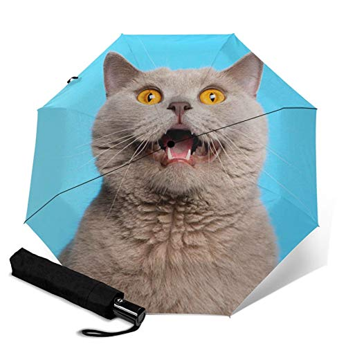 Cat,Auto-Opening Travel Umbrella, Compact, Foldable, Sun & Rain Protection, Windproof, Portable Umbrella for Kids, Women, Men