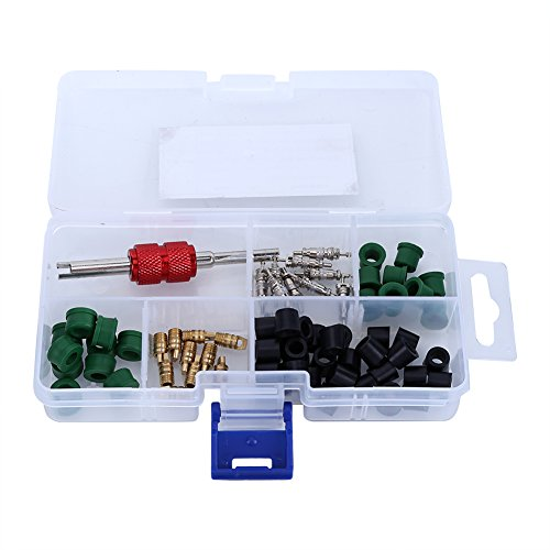 SANON Kit de Núcleo de Válvula de Aire Acondicionado Herramienta de Reparación de Kit de Reparación de Aire Acondicionado de 71 Piezas+Núcleos de Válvula de+Juntas de Manguera de