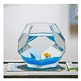 Tanque de cristal para peces y tortugas, mini ecosistema acuapónico, con arena de vidrio y simulación de plantas de agua, para decoración de mesa de té de oficina