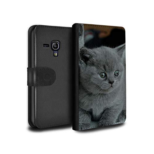 Hülle Für Samsung Galaxy S3 Mini Süß Baby Tier Fotos Graues Kätzchen Katze Design PU Leder Tasche Brieftasche Schutz Handyhülle Flip Case