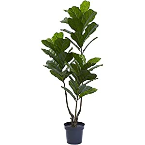 Nearly Natural 65in. Fiddle Leaf UV Resistant (Indoor/Outdoor) Artificial Tree, 65″, Green