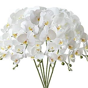 FagusHome 32″ Artificial Phalaenopsis Flowers 6 Pcs Artificial Orchid Flowers Stem Plants for Home Décor (6Pcs)