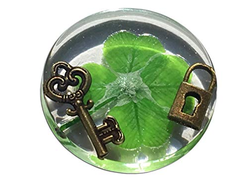 "KIN-HEBI Real Four Leaf Clover Good Luck Pocket Token, Preserved, 1.25"" (Including Metallic Lock and Key Objects)"