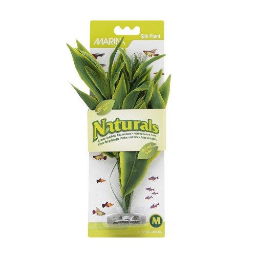 Marina Naturals Green Dracena Silk Plant, Medium