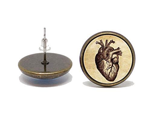 Pendientes de anatomía humana corazón Pendientes Joyería de medicina