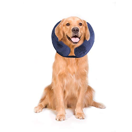 PAWISE Inflatable Protective E-Collar for Dogs and...