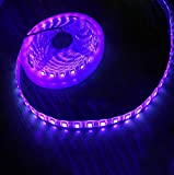 CJFHBVUQ Cinta de luz púrpura Tira de luz led, 1 5050 plástico Impermeable Detector de Dinero esterilización médica Ultravioleta, Luces led