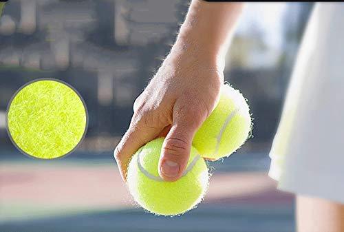 Haodou 3 Stück Tennisbälle Hohe Elastizität Tennis Ball Professionelle Trainingsbälle für Haustiere Hunde Katze Gelb