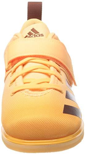 adidas Powerlift 4, Zapatillas Halterofilia Mujer, NARACI/SEPSIL/NARBRU, 40 EU
