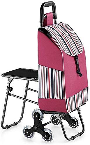 JIAN boodschappentrolley met kruk, inklapbaar, draagbaar, staal, kristal, hoge draagkracht, voor ouders en ouderen, voor het winkelen van trips (