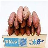 【大分県産】 激甘さつま芋 甘太くん S~2Lサイズ 大きさおまかせ 1箱 約5kg