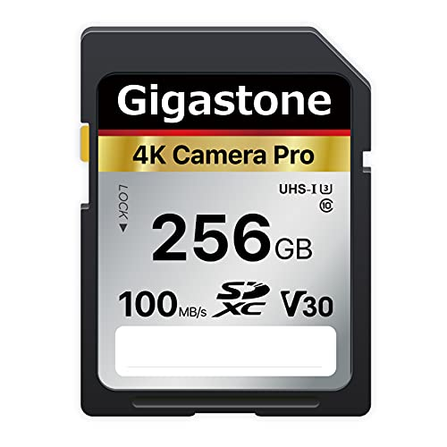 memoria cámara de la marca Gigastone