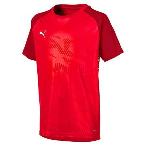 Puma Cup Camiseta De Entrenamiento 2019-20, Niño, Rojo (Chilli Pepper), 8 años