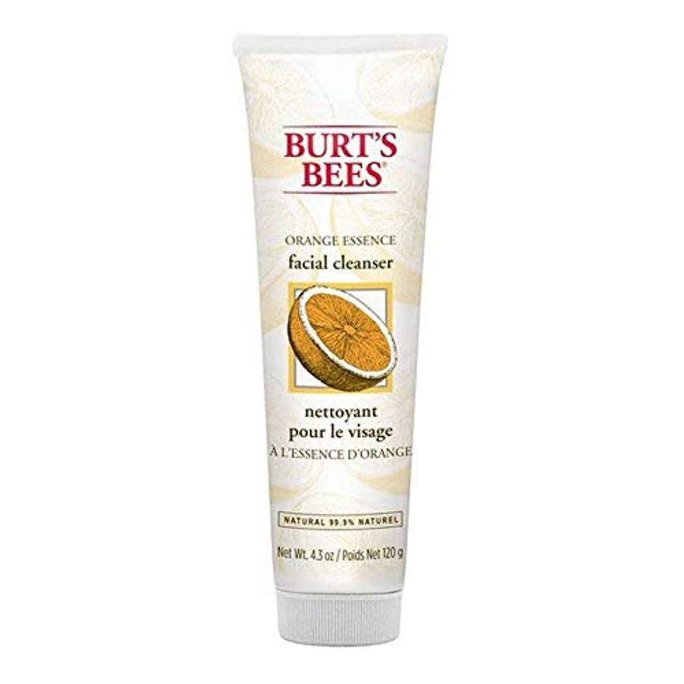 割り当てます独創的新着[Burt's Bees ] バーツビーオレンジエッセンス洗顔料の120グラム - Burt's Bees Orange Essence Facial Cleanser 120g [並行輸入品]