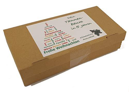 Weihnachtsgeschenk Tannenbaum-Anzuchtset Edeltanne – dein Weihnachtsbaum in 5 Jahren | Geschenk zu Weihnachten, Christbaum, Wichtelgeschenkt (Edeltanne)