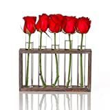 Kingbuy Wall Hanging Glass Planter Propagation Station Test Tube Vase Flower Pots in Vintage Wood Stand Rack with 5 Tabletop Terrarium Windowsill Accessory, Wedding, Kitchen (5 Test Tube, Brown Wood)