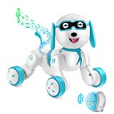 Remote Control Robot Dog - RC Robotic Stunt Puppy Smart RC Robot with LED Eyes, Interactive Walking Sing Story Telling Electronic Dog Pets Best Christmas Dog Gift for Kids Boys & Girls