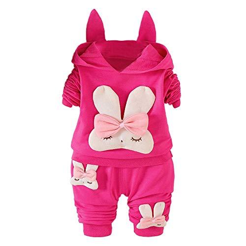 LANSKIRT Ropa de Recién Nacido Infantil bebé niñas impresión de Conejo de Dibujos Animados de Manga Larga Jersey con Capucha + Pantalones Largos de Dos Piezas Traje de Color sólido