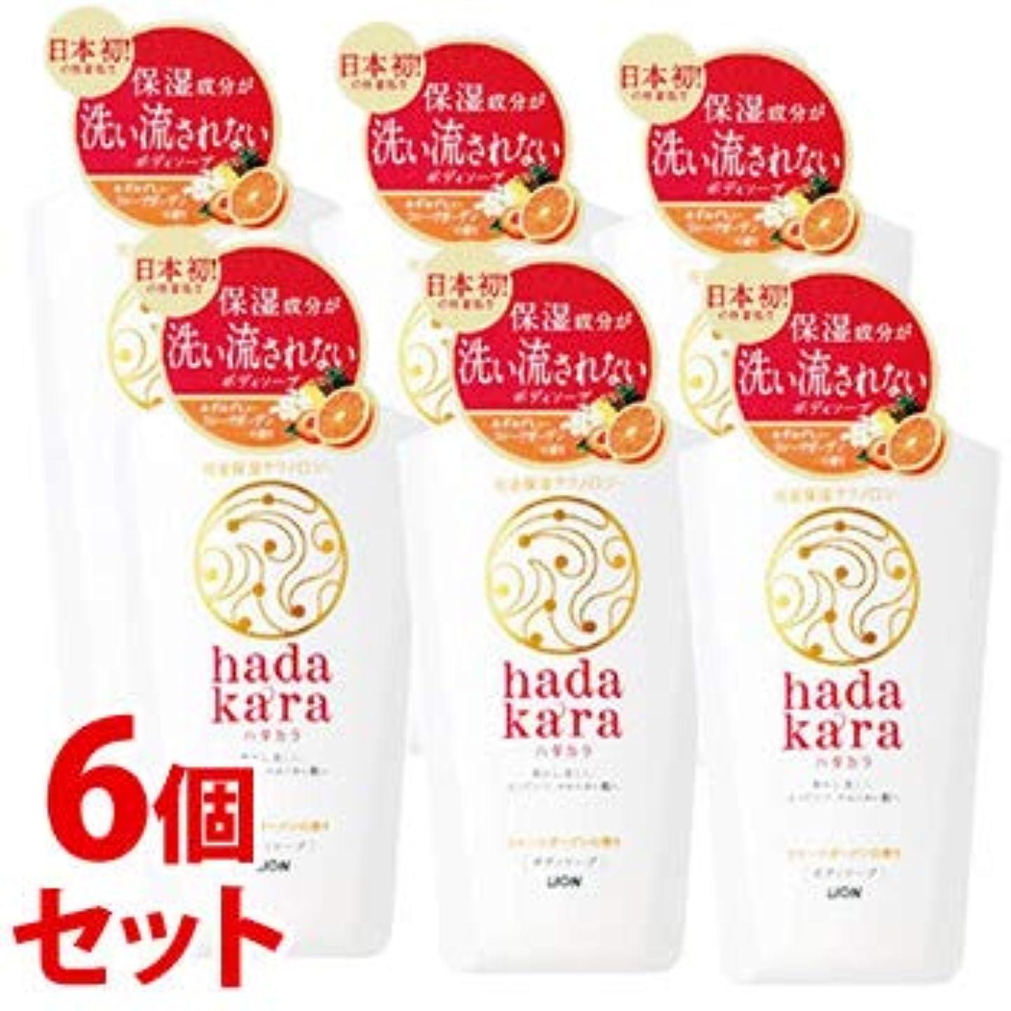 寸前枯渇好み《セット販売》 ライオン ハダカラ hadakara ボディソープ フルーツガーデンの香り 本体 (500mL)×6個セット
