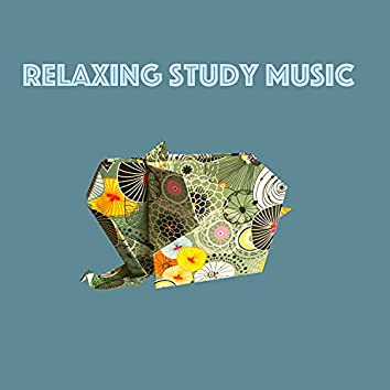 Relaxing Study Music
