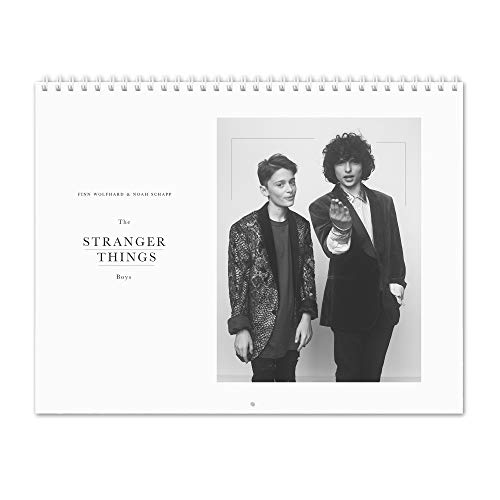 Finn Wolfhard & Noah Schapp - The Stranger Things Boys 2020 Calendario de pared