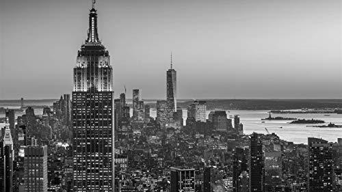 1000 piezas de juguetes educativos para adultos, Empire State Building New York Puzzle games, juegos eternos, regalos navideños para la decoración de la pared del hogar