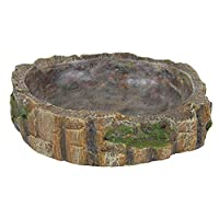 Polyester resin material safe for the use with food Interior steps to reach water and food more easily Natural look reptile water and food bowl Smooth inside makes it easy to clean Measures 13 cm length by 3.5 cm width by 11 cm height