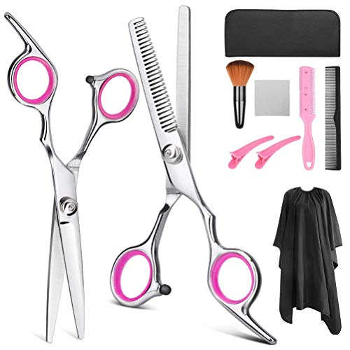TAIPPAN Professionele Haar Snijden Schaar Set, 10 stks Kappers Schaar Kit Thinning Shears Kam Clips Kit voor Barber Salon en Thuis