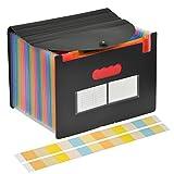 YOTINO Cartelle a Soffietto Espandibili A4, Cartella Colorata A4 in Plastica, Cartella Porta Documenti con 24 Scomparti e 78 Tessera Tag, Cartella organizzativa