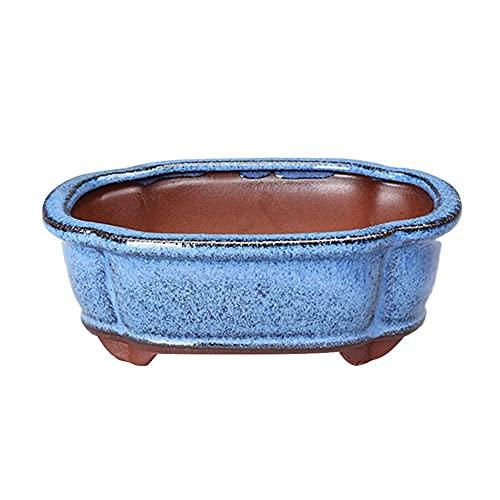 Raybre Art® Macetero Chino Ovalado para bonsái, macetero esmaltado Azul, macetas de cerámica con Salida de Agua, 14,8 * 10,8 * 5 cm