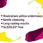 Schwarzkopf Professional - Shampooing Neutralisant Ph4.5 300ml Good Bye Yellow Schwarzkopf Professional #3
