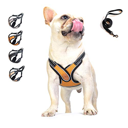 Dog Harness - No Pull Adjustable Soft Air Mesh Vest Harness and Leash Set for Small and Medium Dogs Puppy Cats