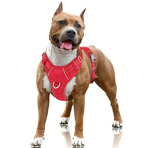 BARKBAY No Pull Dog Harness Large Step in Reflective Dog Harness with Front Clip and Easy Control Handle for Walking Training Running with ID tag Pocket(Red,L)