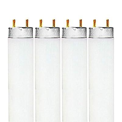 Luxrite LR20740 F32T8/735 T8 32-Watt 4 ft. Fluorescent Tube Light Bulb, Natural 3500K, 2850 Lumens, G13 medium bi-pin base