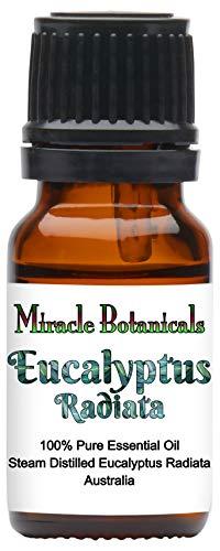 Miracle Botanicals Australian Eucalyptus Radiata Essential Oil - 100% Pure Eucalyptus Radiata - Therapeutic Grade 10ml