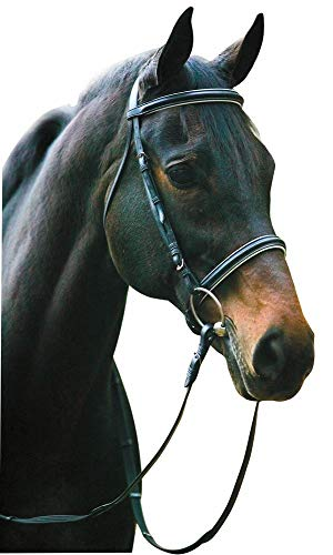 Henri de Rivel Horse Dressage Bridle and Web Reins with Free Fly Veil | Equestrian Leather Bridle