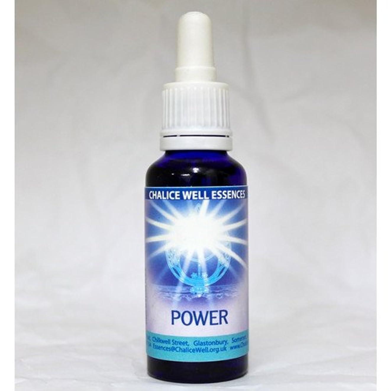 シリアル子供時代完璧なチャリスウェル エッセンス ヘブンオンアース Heaven on Earth パワー Power 30ml