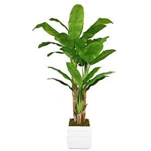 Vintage Home VHX117211 Artificial Plant, White