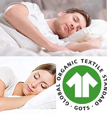 100% Talalay Latex Pillow with GOTS Certified Organic Cotton Cover, King Size (Soft), Soft Bed Pillow for Sleeping, for Back, Stomach and Side Sleepers, Helps for Back, Neck and Shoulder Pain Relief…