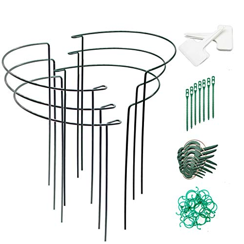 40cm 6 Pack Flower and Perennial Holder Steel Shrub Support Flower Holder Garden Plant Support Single Stem Support Stake Plant Support Rings for Rose Tomatoes Lily Peony Gobesty Plant Support Stakes