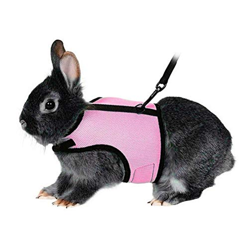 POPETPOP- Soft Harness with Lead for Rabbits Bunny Little Pets - Size XL(Pink)