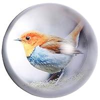 Waltz&F 直径約70MM エルフの鳥デザイン k9クリスタル 半球 水晶 文鎮 ペーパーウェイト プレゼント 置物