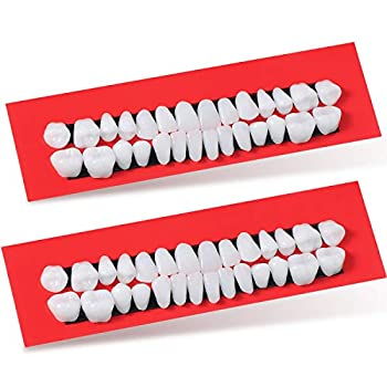 56 Pieces Halloween Horror Teeth Denture Teeth Synthetic Resin Teeth for Halloween Makeup Cosplay Costume Scary Party Ornament Supplies 2 Sets