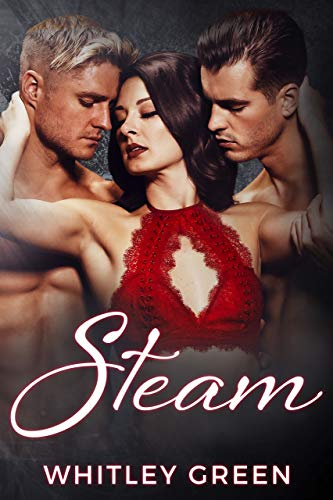 Steam (The Sizzle TV Series Book 4) (English Edition)